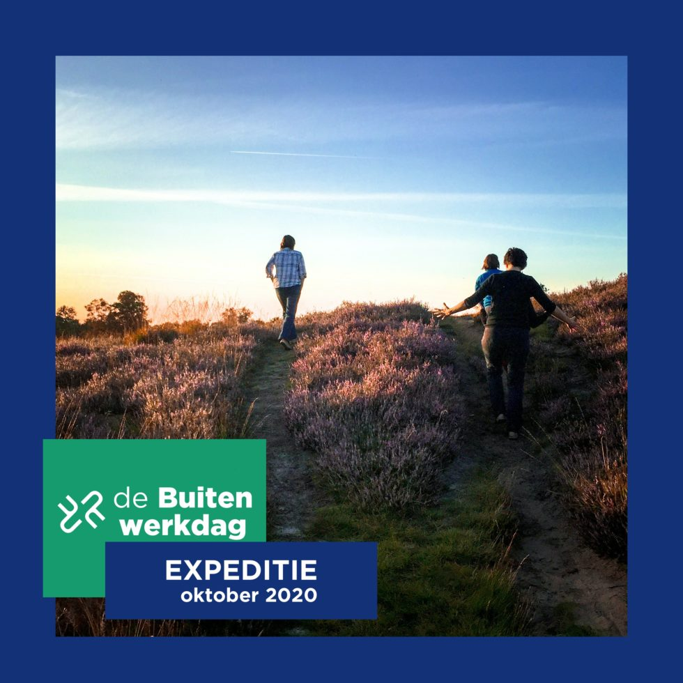de buitenwerkdag teamdag bedrijfsuitje teamuitje drenthe noord-nederland